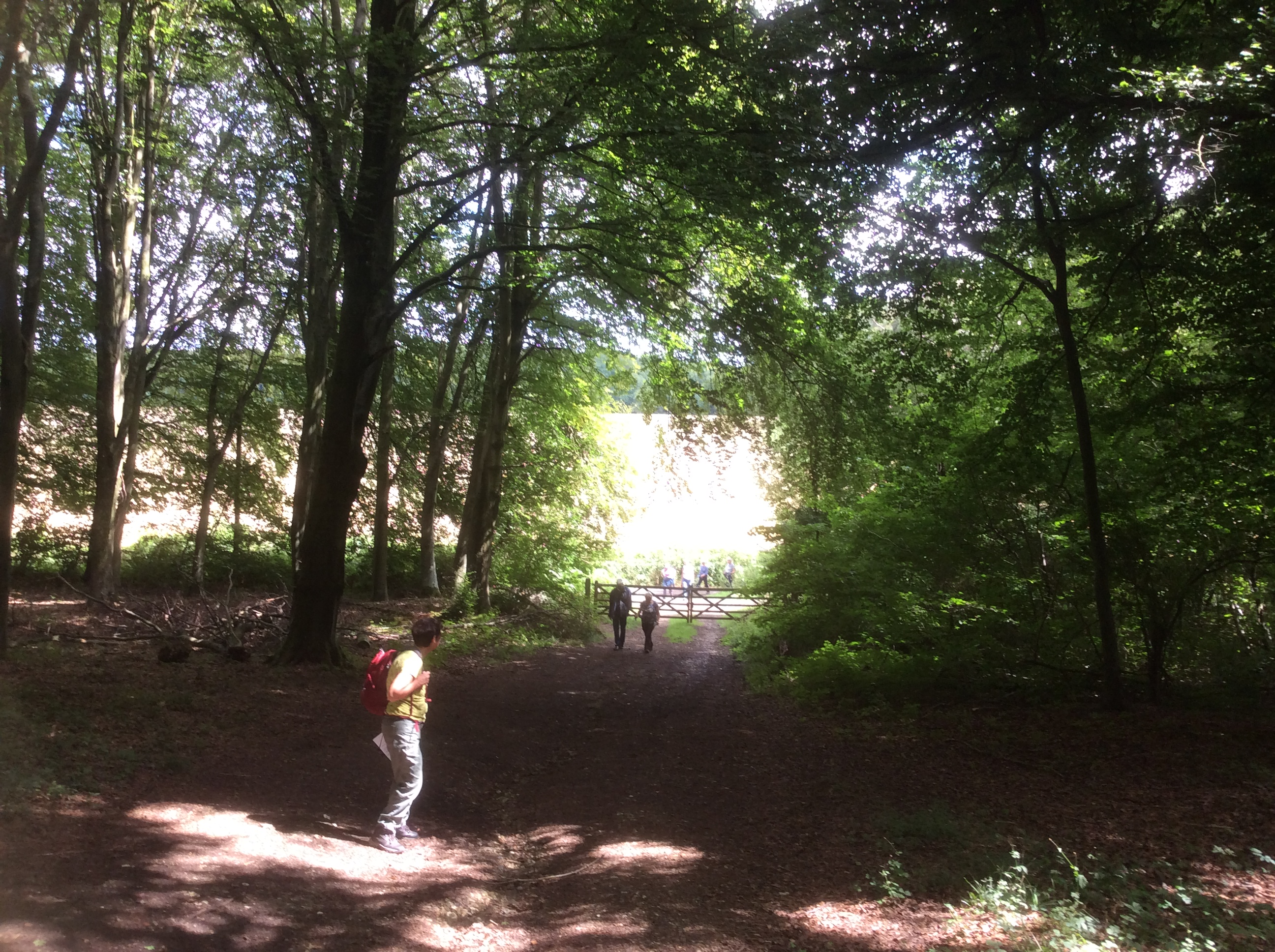 Hinton walk 140818 1